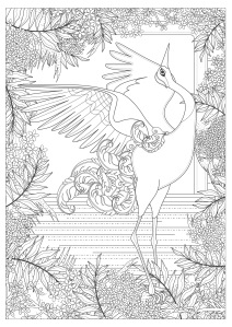 Download PDF Mindfulness colouring: crane flapping