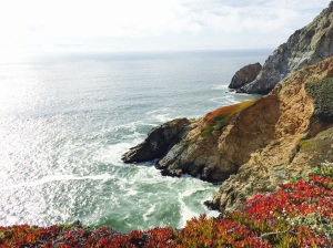 maladaptiveday dreaming mindfulness