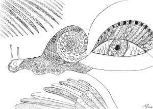 free mindfulness colouring sheets psychedelic creative seagull snail handdrawn