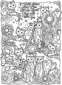 mindfulness colouring sheets pdf cute cats playing