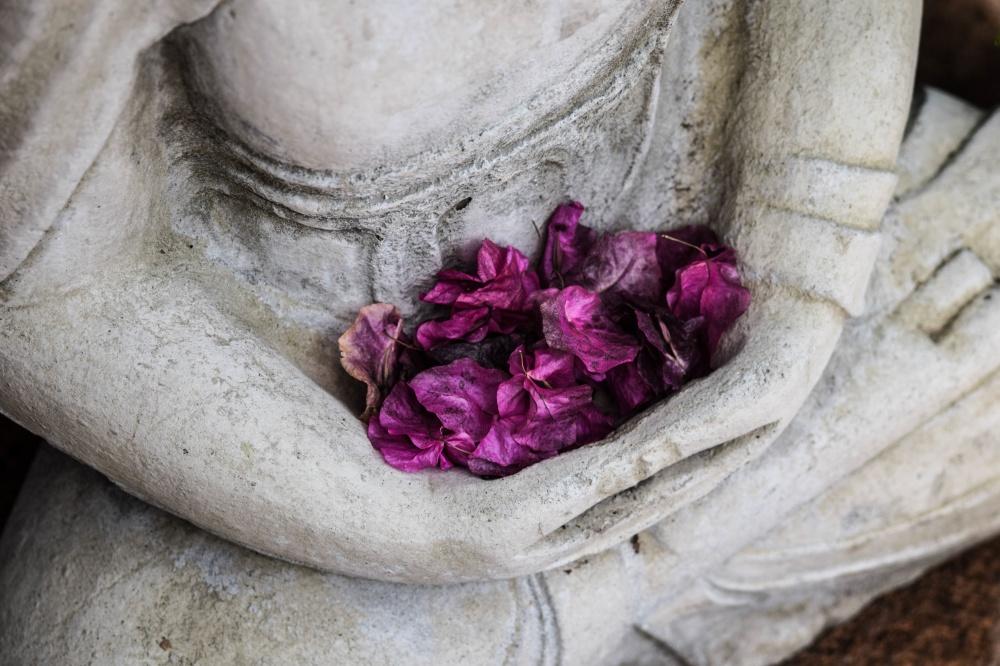 Yuval Noah Harari on Buddhism